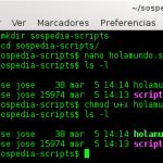 """Detalle de los comandos utilizados, en particular chmod y ls para que veáis el bit """"x"""" de execution"""